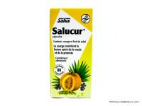 SALUS Salucur 90 capsules