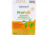 LADRÔME Gommes propolis ravintsara 45g
