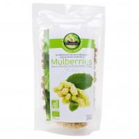 Mûres Blanches Mulberries Séchées Bio 100g