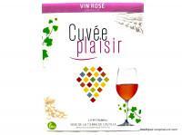 VINO DE LA TIERRA DE CASTILLA Cuvée plaisir rosé 3L